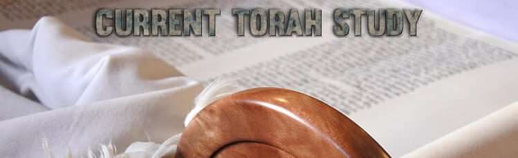Current Torah Study
